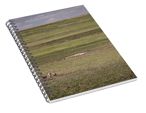 Spiral Notebook featuring the photograph The Three Amigos by Sandy Adams