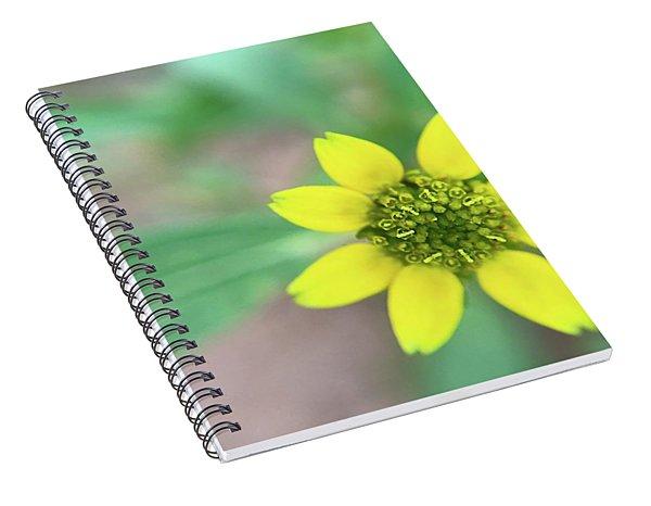 The Tiniest Joys Spiral Notebook