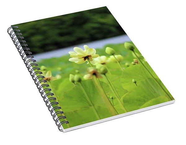 The Water Fields  Spiral Notebook