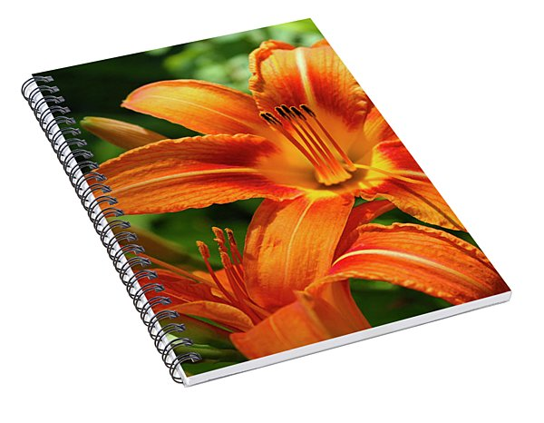 Tiger Lily Explosion Spiral Notebook