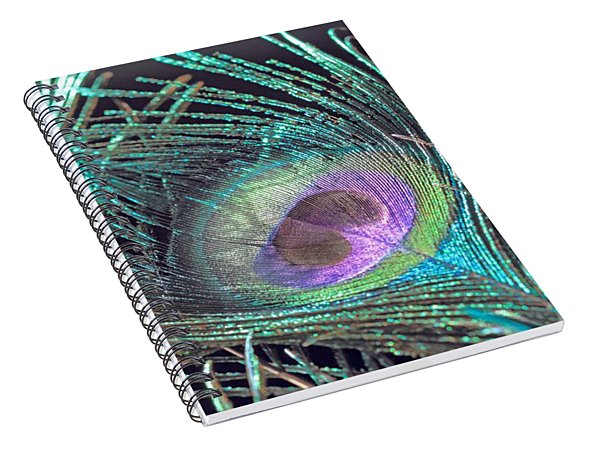 Turquoise Feather Spiral Notebook