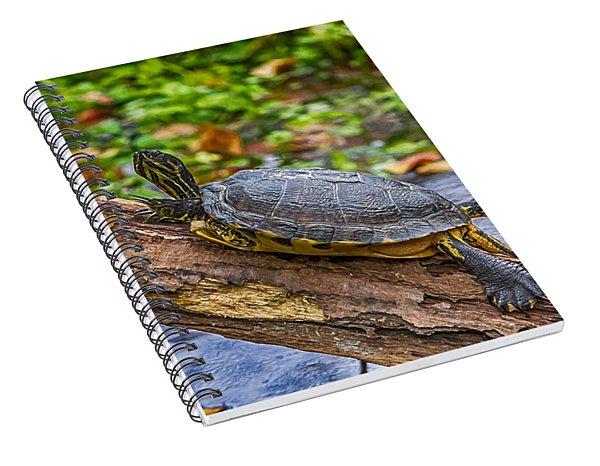 Turtle Yoga Spiral Notebook