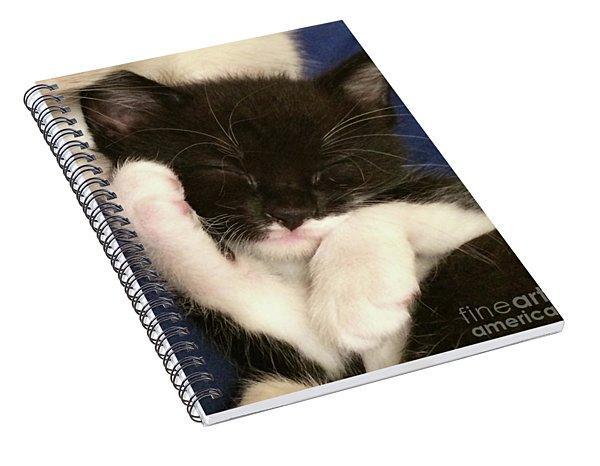 Tuxedo Kitten Snoozing Spiral Notebook