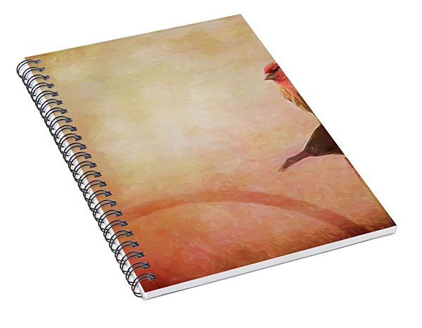 Two Birds In The Mist Spiral Notebook