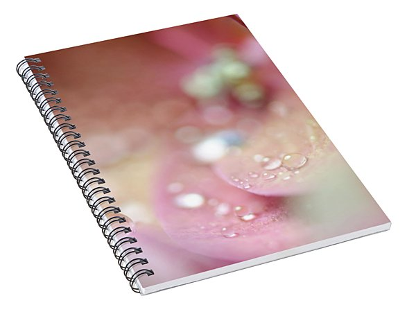 Unfocused Day Dreams Spiral Notebook