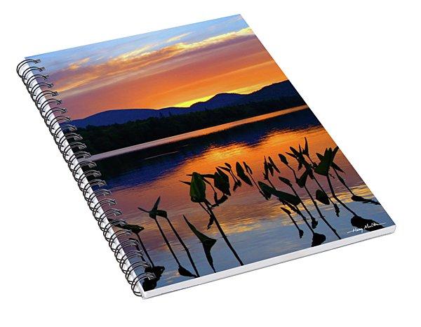 Vivid Shoreline Spiral Notebook