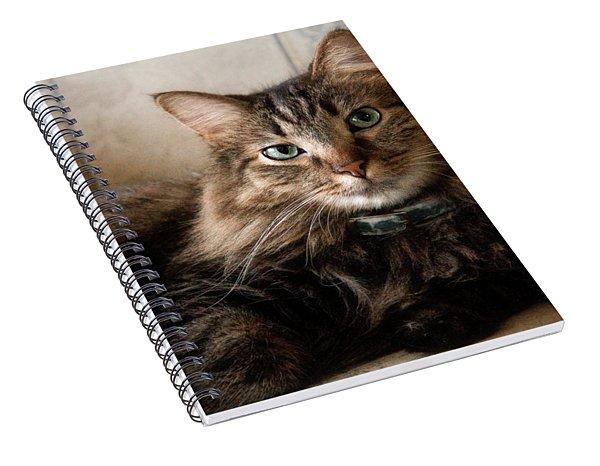 Watching Spiral Notebook