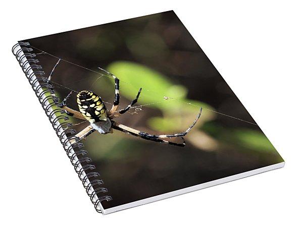 Web Builder Spiral Notebook
