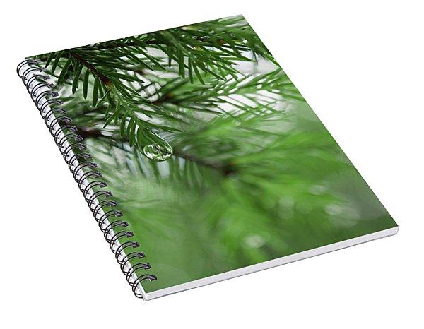 Weeping Pine 2 Spiral Notebook