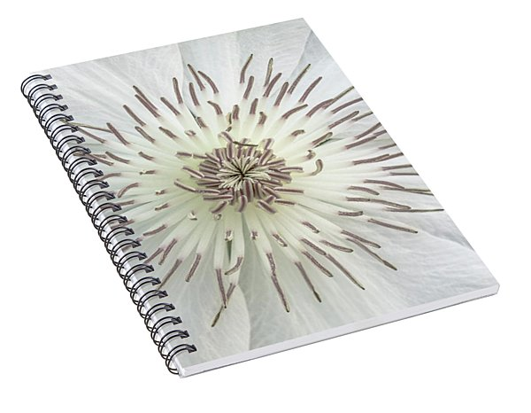 White Clematis Flower Garden 50121b Spiral Notebook