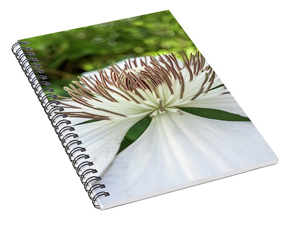 White Clematis Flower Garden 50146 Spiral Notebook