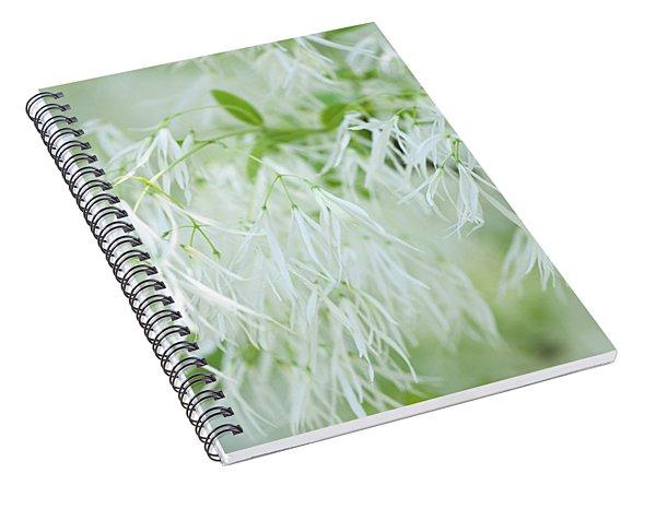 White Fringetree Spiral Notebook