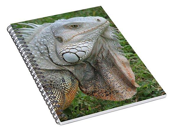 White Lizard Spiral Notebook