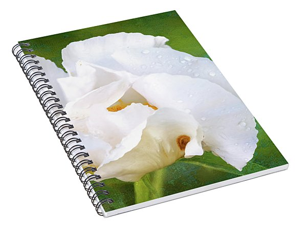 White Peony After The Rain Spiral Notebook