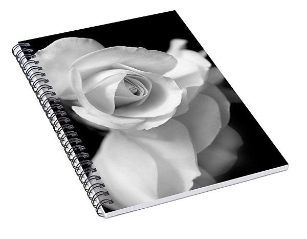 White Rose Petals Black And White Spiral Notebook