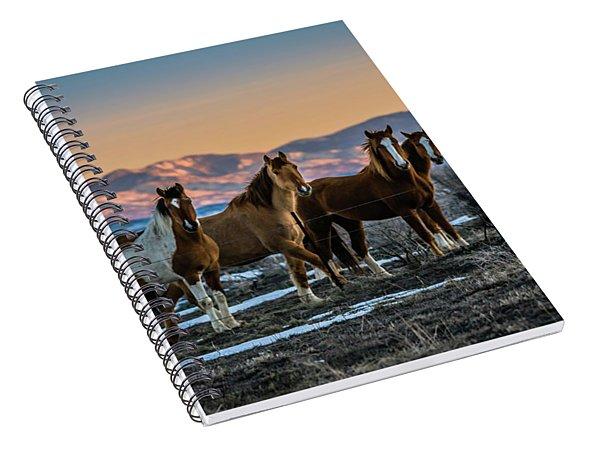 Wild Horse Group Spiral Notebook