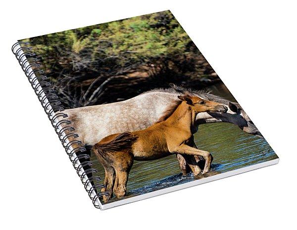 Wild Horses On The Salt River Spiral Notebook