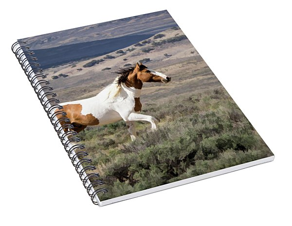 Wild Mustang Stallion On The Move In Sand Wash Basin Spiral Notebook