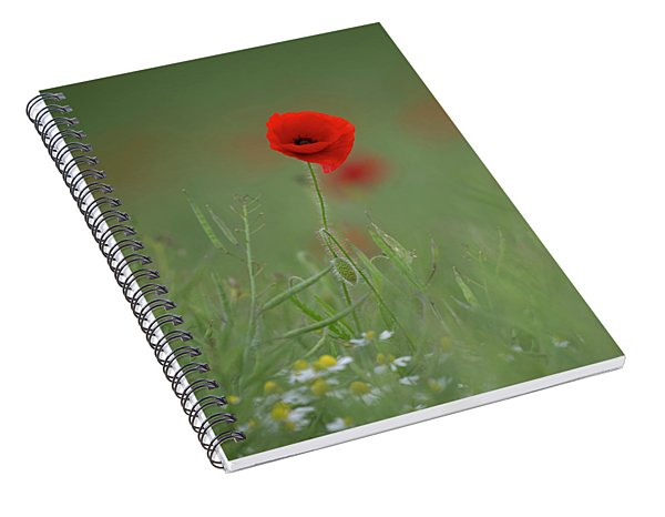Wild Poppy Spiral Notebook
