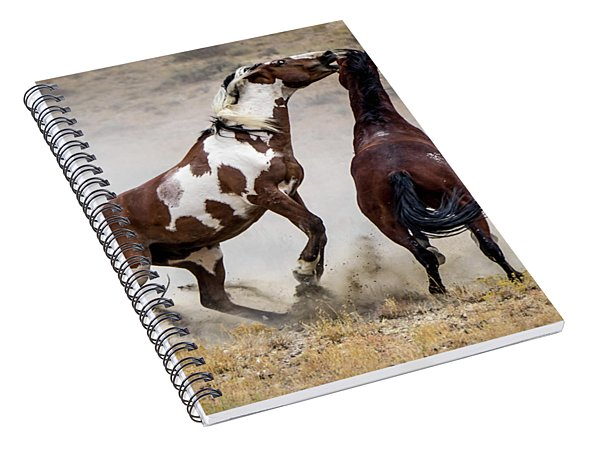 Wild Stallion Battle - Picasso And Dragon Spiral Notebook