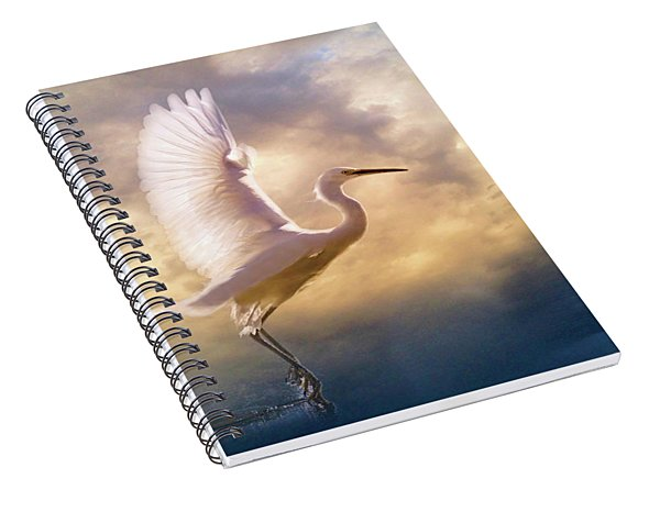 Wings Of Light Spiral Notebook