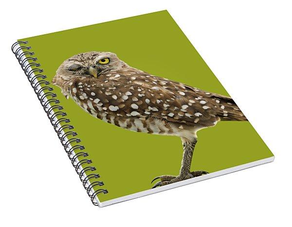 Winking Owl Spiral Notebook