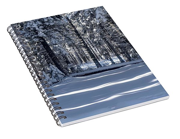 Winter Magic Spiral Notebook