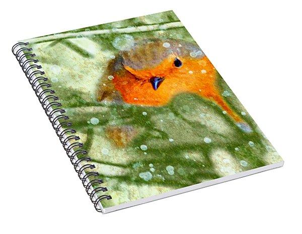 Winter Robin Spiral Notebook