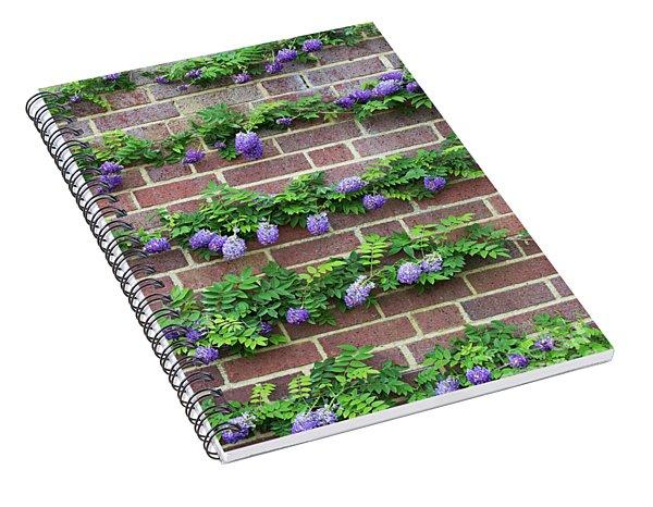 Wisteria Frutescens Longwood Purple Spiral Notebook
