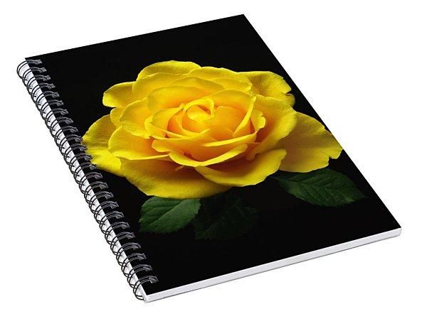 Yellow Rose 6 Spiral Notebook