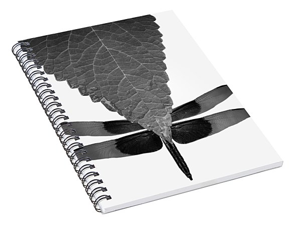 Hiding Dragons Spiral Notebook