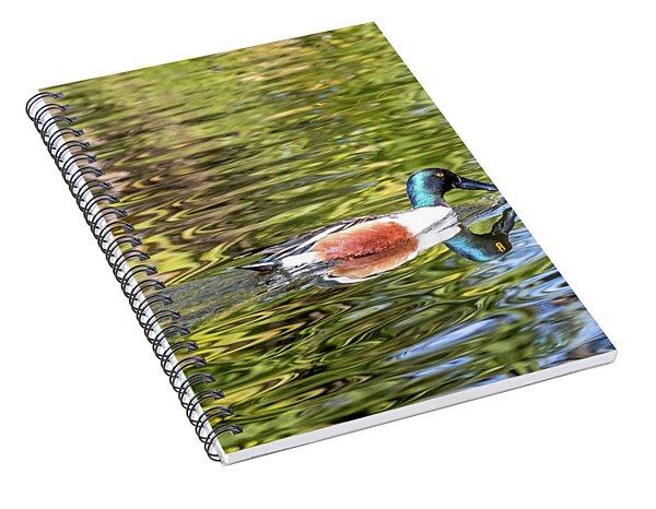 Northern Shoveler Spiral Notebook