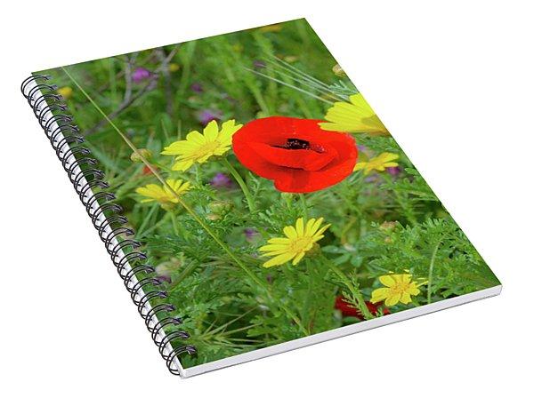 The Red Spot Spiral Notebook