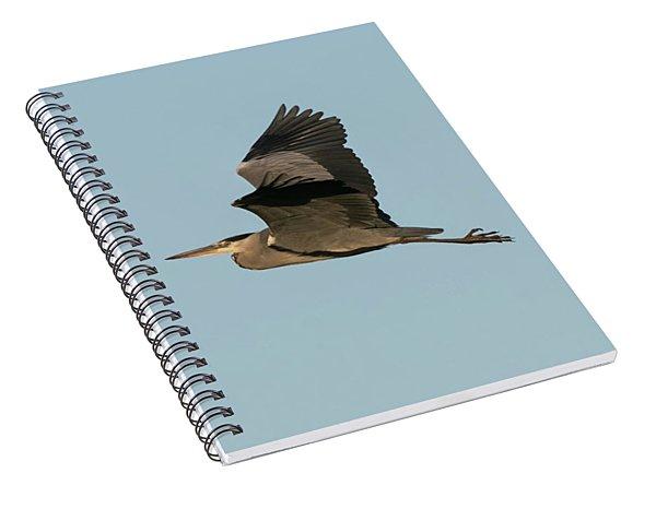 Grey Heron Spiral Notebook