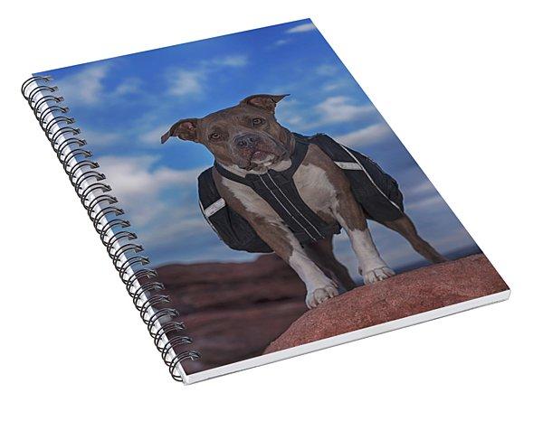 Molly Spiral Notebook