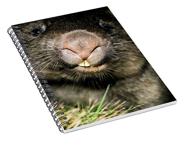 Wombat At Night Spiral Notebook