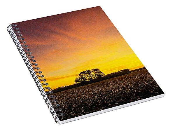 Amplitude Spiral Notebook