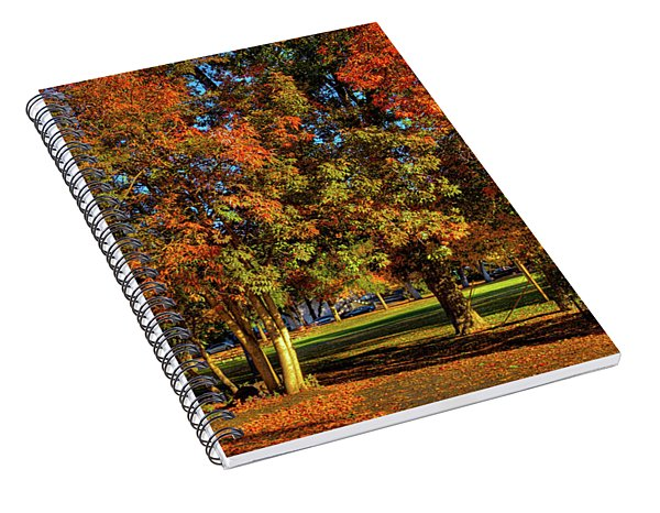 Autumn In Reaney Park Spiral Notebook