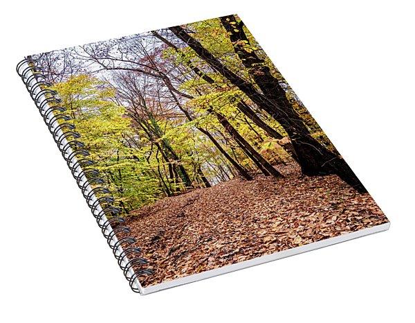 Autumn Woods Spiral Notebook