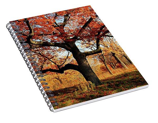 Autumns Paint Brush Spiral Notebook