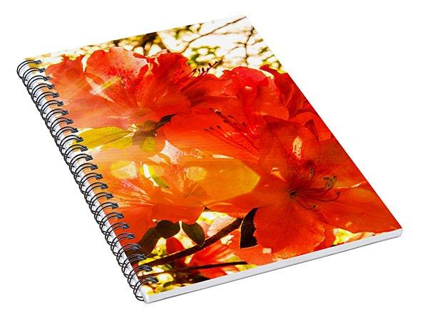 Azalea Sunrise Spiral Notebook