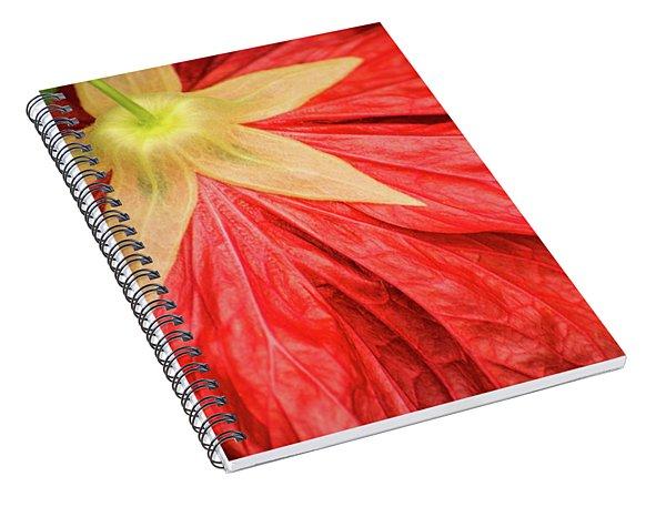 Back Of Red Flower Spiral Notebook