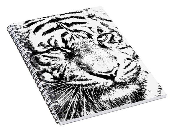 Bad Kitty Spiral Notebook