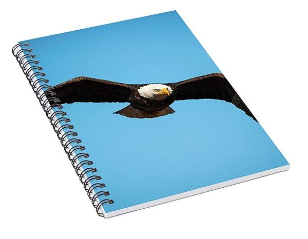 Bald Eagle In Flight  Spiral Notebook