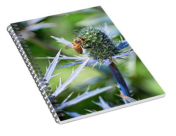 Bee's Got The Blues Spiral Notebook
