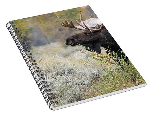 Big Bull Spiral Notebook