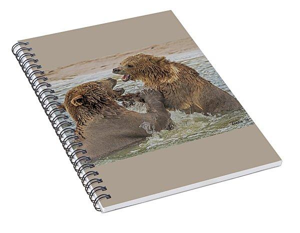 Brown Bears Fighting Spiral Notebook