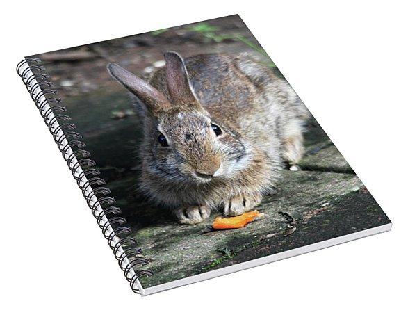 Bunny Wants A Carrot Spiral Notebook