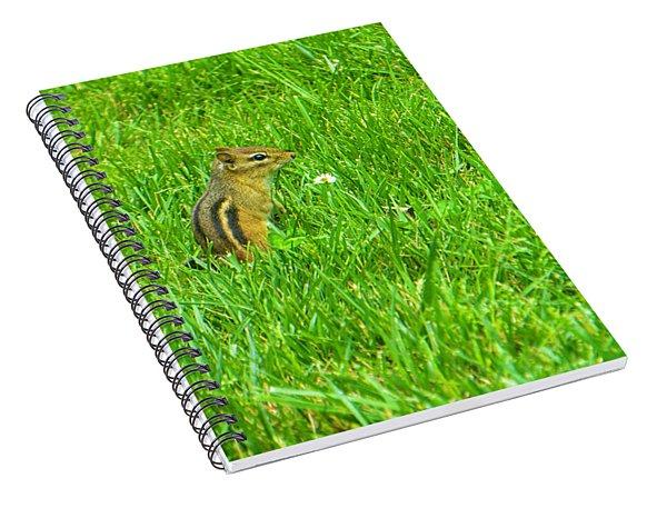 Chipmunk And The Flower Spiral Notebook