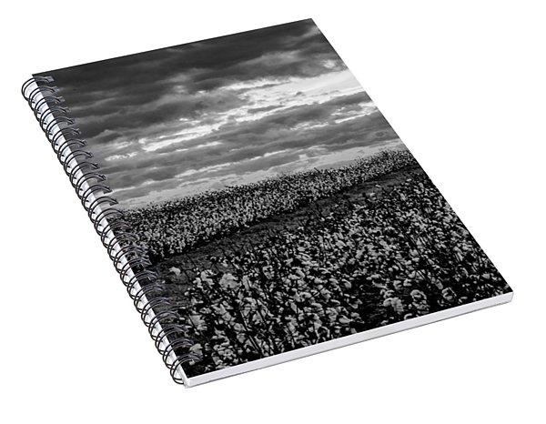 Cotton On A Hill Spiral Notebook